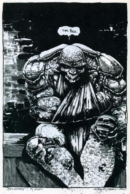 michael zulli ninja turtles019