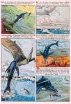 turok young earth dinosaurs (100)