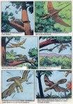 turok young earth dinosaurs (14)