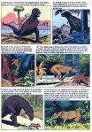 turok young earth dinosaurs (17)