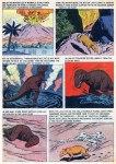 turok young earth dinosaurs (18)