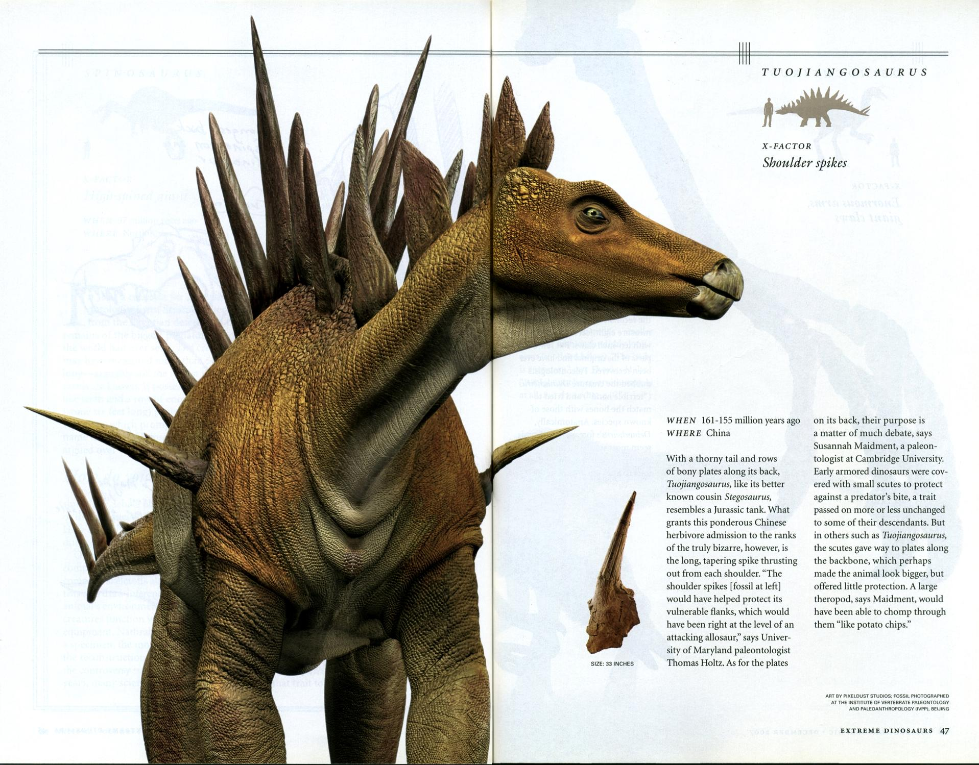 extreme dinosaurs essay Will carpenter from warwick was looking for custom mba creative essay example lonnie gallagher found the cause and effect essay topics extreme dinosaurs.