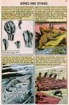 prehistoric world-041