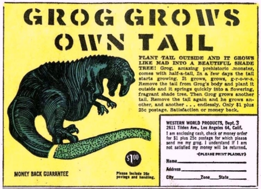 grog grows own tail