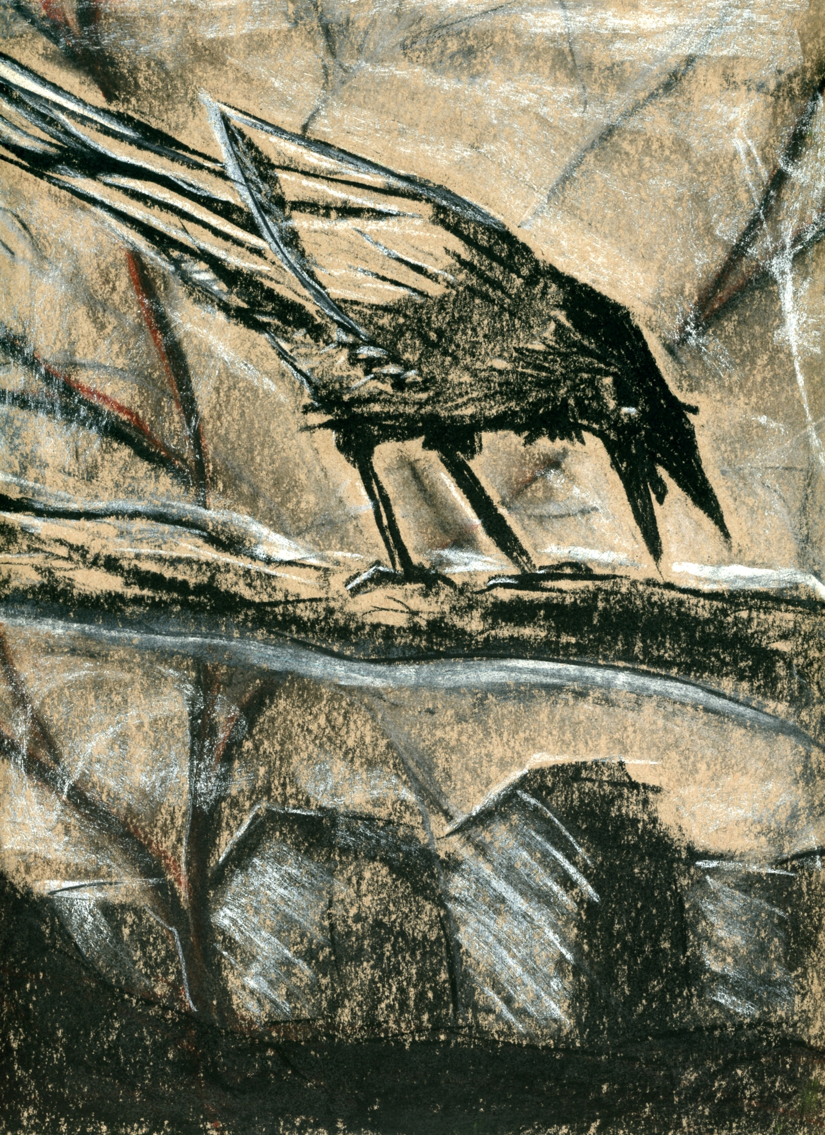 charcoal bird -001