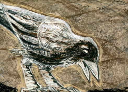 charcoal bird 3 -001