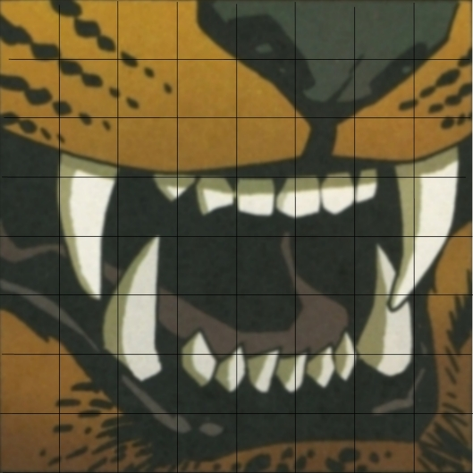 tiger by Risso - with grid