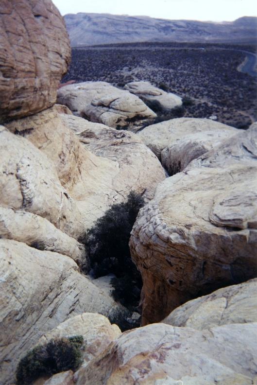 nevada desert -007 red rocks 2