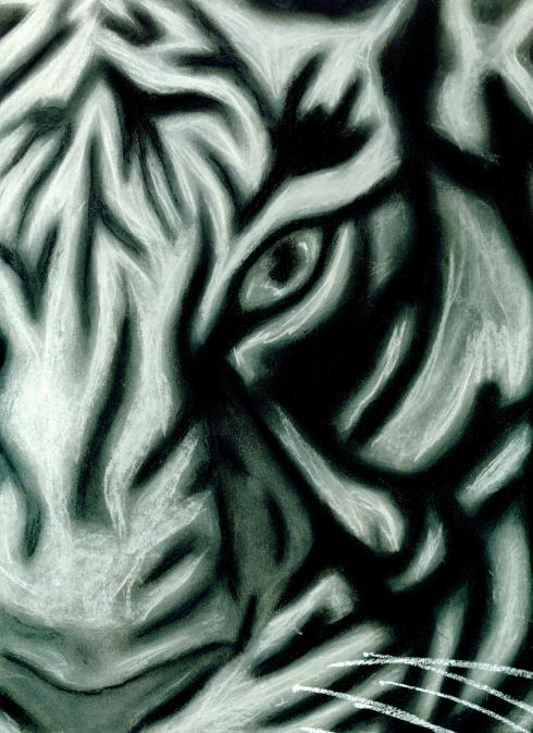 pastel tiger v2