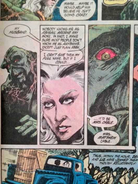 Swamp Thing 1-17 Pasko Collection (30)