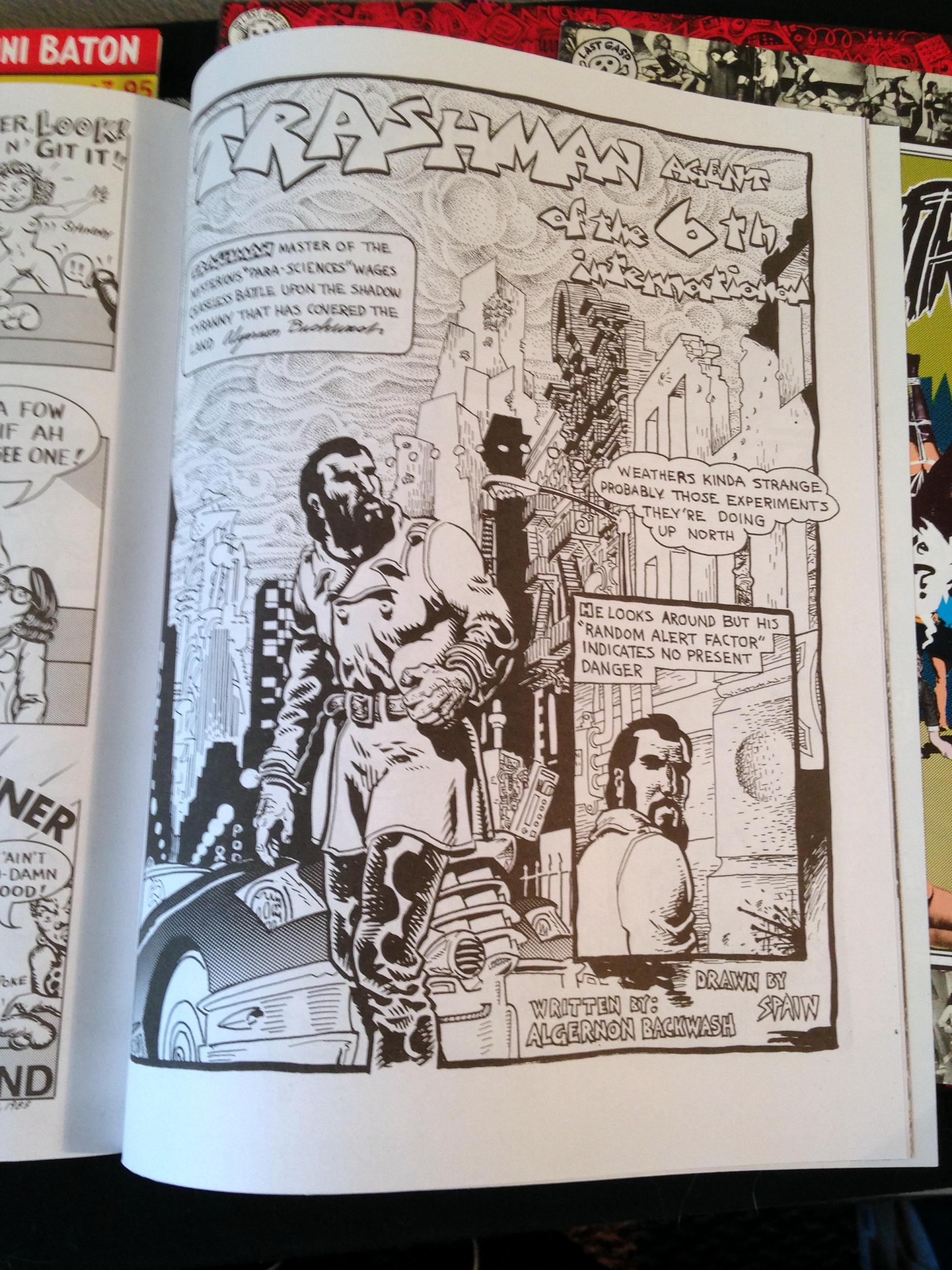 Weirdo Magazine Collection (11)