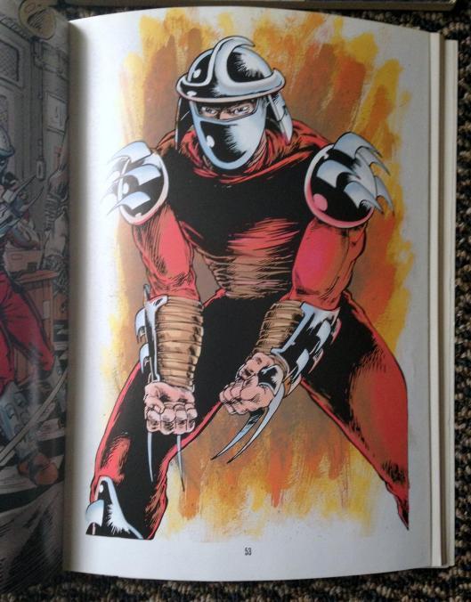 teenage mutant ninja turtles graphic novel set (11)
