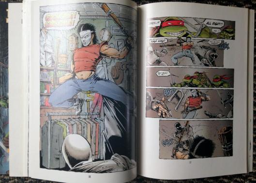 teenage mutant ninja turtles graphic novel set (12)