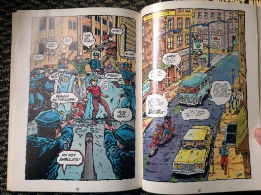 teenage mutant ninja turtles graphic novel set (13)