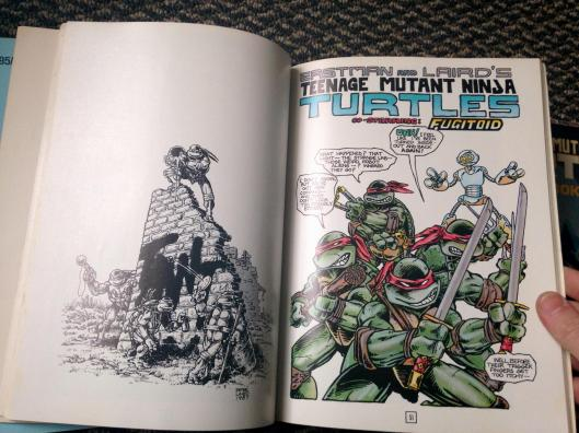 teenage mutant ninja turtles graphic novel set (14)
