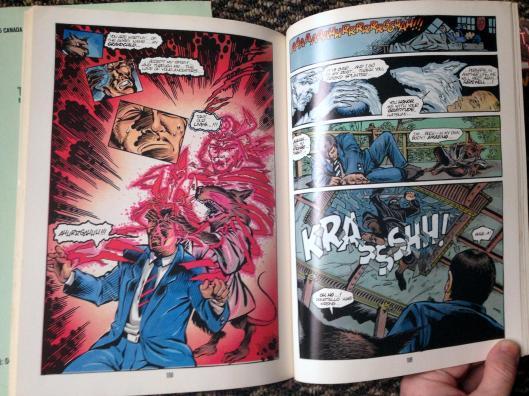 teenage mutant ninja turtles graphic novel set (17)