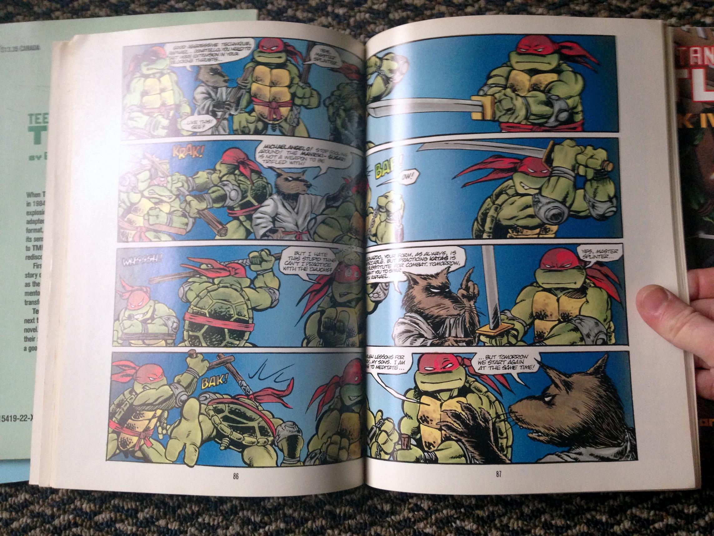 teenage mutant ninja turtles graphic novel set (18)