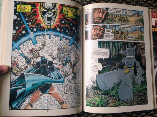 teenage mutant ninja turtles graphic novel set (19)