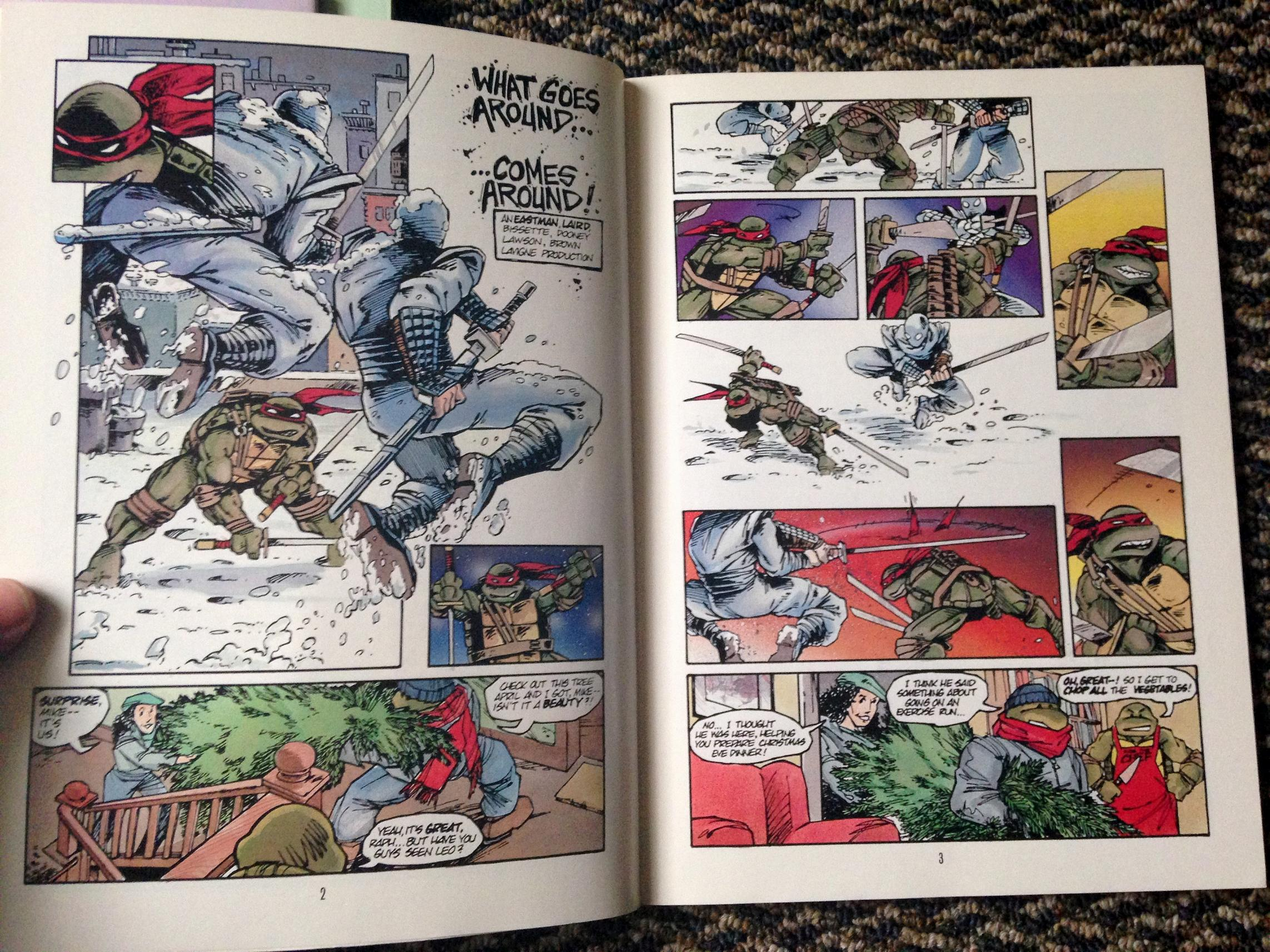 teenage mutant ninja turtles graphic novel set (20)