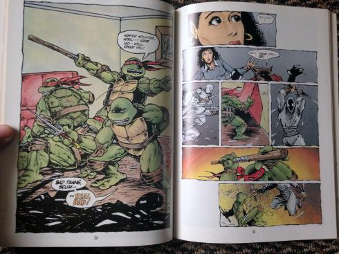 teenage mutant ninja turtles graphic novel set (21)