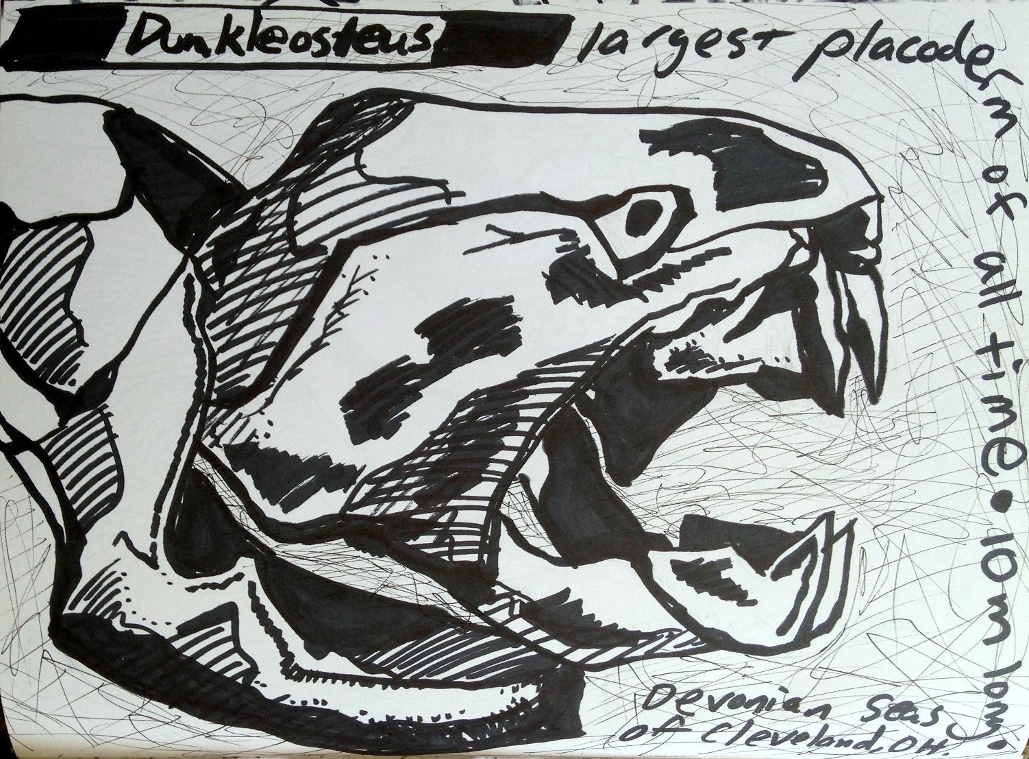 sketchbooks 7 (7)