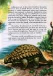 world of dinosaurs edwin colbert george geygan -028