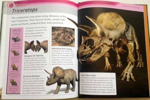 kingfisher dinosaur encyclopedia (10)