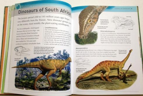 kingfisher dinosaur encyclopedia (6)