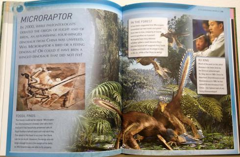 kingfisher dinosaur encyclopedia (7)