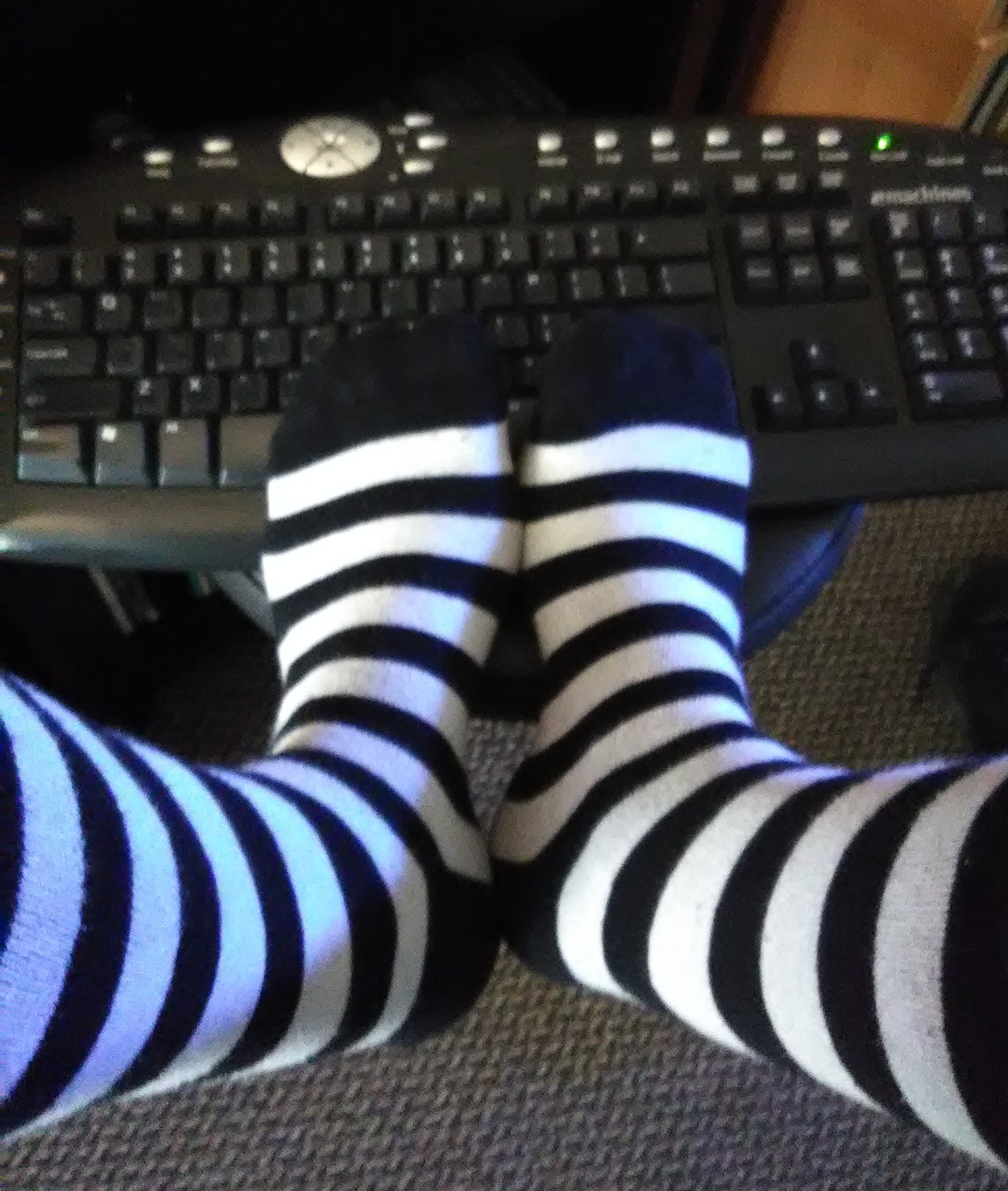 blogging in socks.jpg