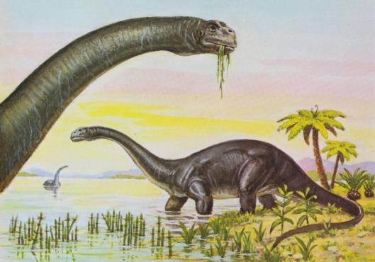 Brontosaurus (Jurassic period) - for web
