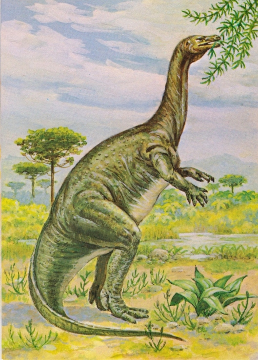 Plateosaurus (Triassic period) - for web