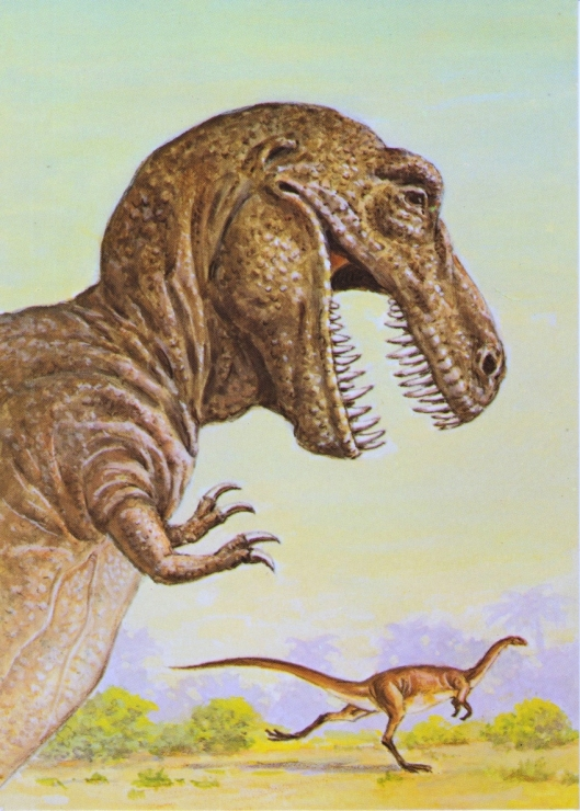 Tyrannosaurus Rex and Ornithomimus (Cretaceous period) - for web