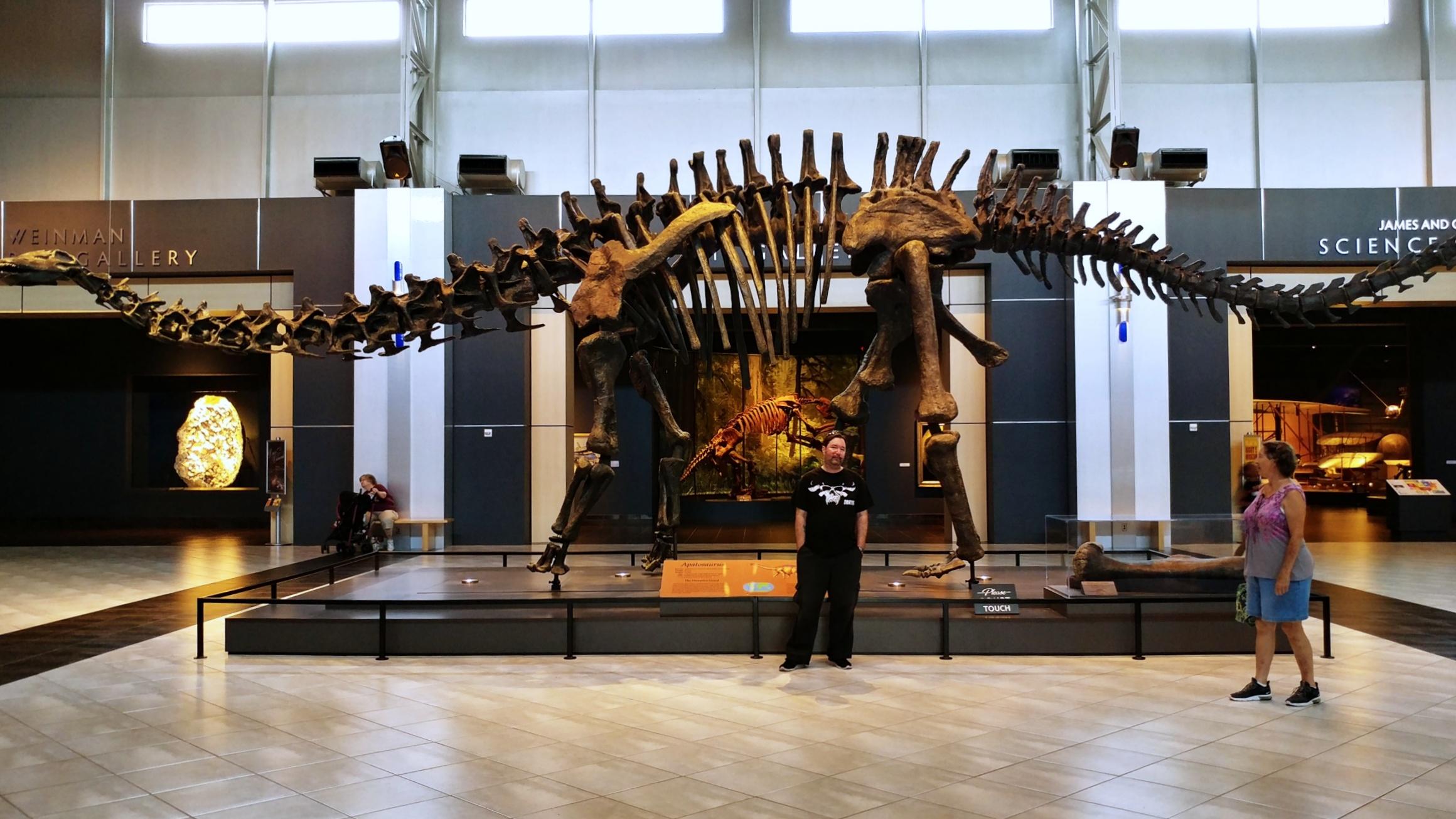 tellus science museum lobby apatasaurus jul 2019 (4).jpg